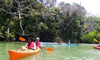 Perfect Tandem Kayak Rental in Elba, Alabama!