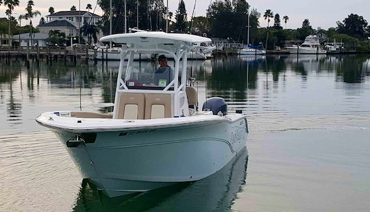 Fishing Charter On 26' Sea Fox Commander Boat In Saint Pete Beach, Florida
