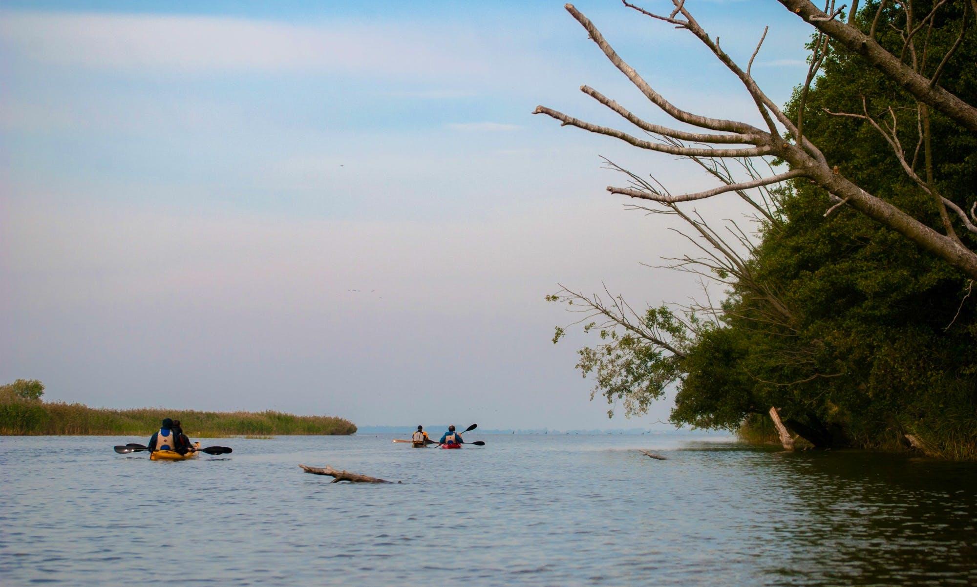 Sea kayak tour around Curonian Lagoon