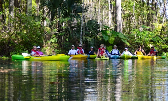 Kayak & Sup Jungle Tours In Silver Springs