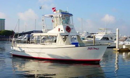 Dive Boat Iv - Diving Trips In Fort Lauderdale