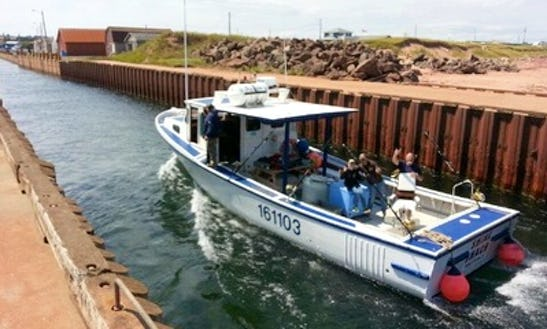 Daily Fishing Charter In Souris