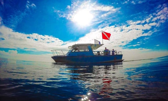 Dive boat iv diving trips in fort lauderdale getmyboat for Deerfield beach fishing charter