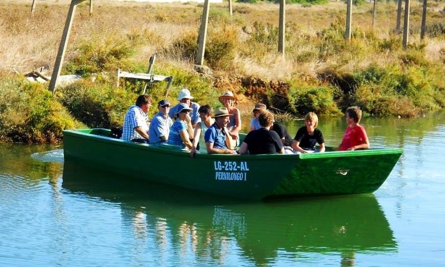19' Passenger Boat Trips in Lagos, Portugal