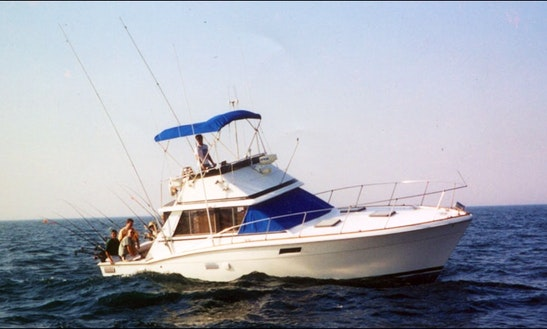 36ft Trojan Sport Fisherman Boat Charter In Chicago, Illinois
