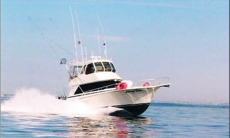 44ft Henriques Sportfisherman Charter in Brielle, New Jersey