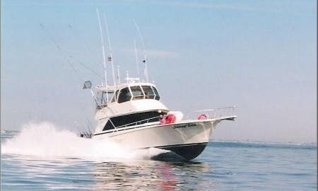 44ft Henriques Sportfisherman Charter in Brielle, New Jersey