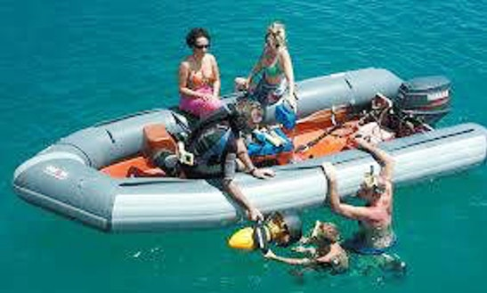 Inflatable Rib Rental In Palm Beach Gardens, Florida