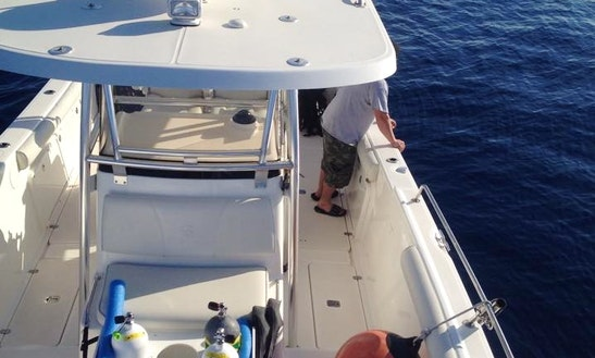 Center Console Diving Trips & Courses In Madeira Beach, Florida