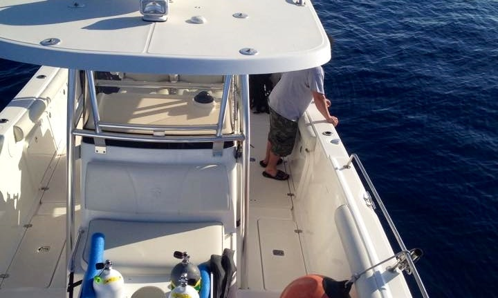 Center Console Diving Trips & Courses in Madeira Beach