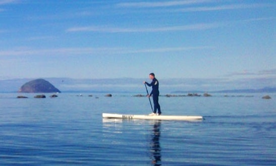 Stand Up Paddle Boarding In Ayshire And Scotland