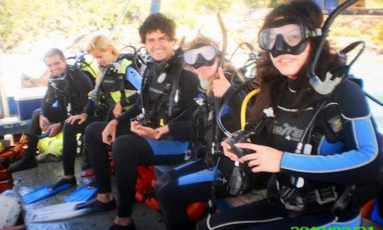 Diving Trips In La Mira, Venezuela