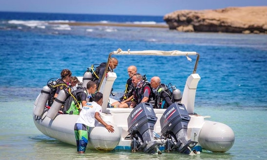 Diving Trips & Courses In Qesm Marsa Alam, Egypt