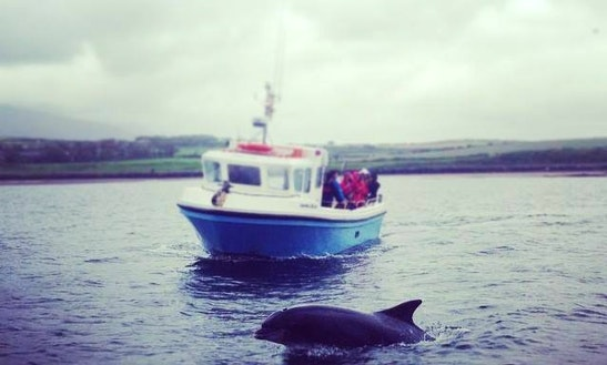Passenger Boat Trips In Bundoran, Ireland