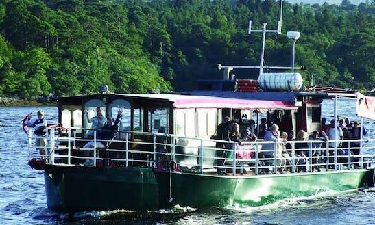 Seafari Boat Trips In Kerry, Ireland