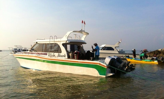 Diving Trip On A Speed Boat For 10 People In Denpasar Selatan, Indonesia