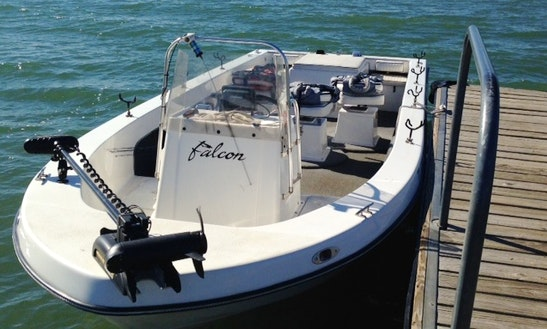 23ft Falcon Fishing Charter In Pilot Point, Texas