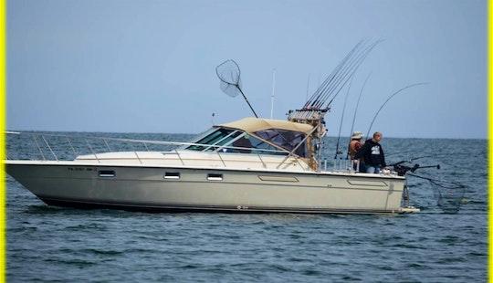 Lake Erie Pa Walleye Fishing Charters