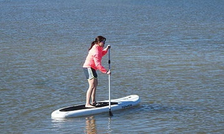 Stand Up Paddleboards >> Stand Up Paddleboard Rental In Gulf Shores