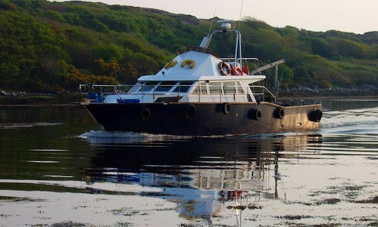 Charter 52' Luxury Angling Boat