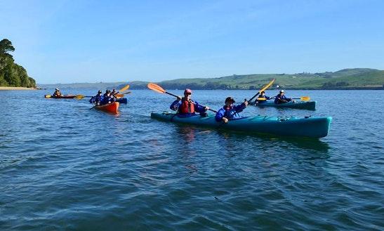 Rent Tandem Kayak And Paddle Along Tomales Bay