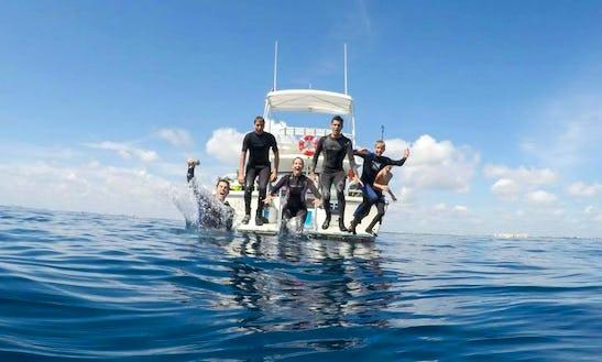 Scuba Diving In Jupiter