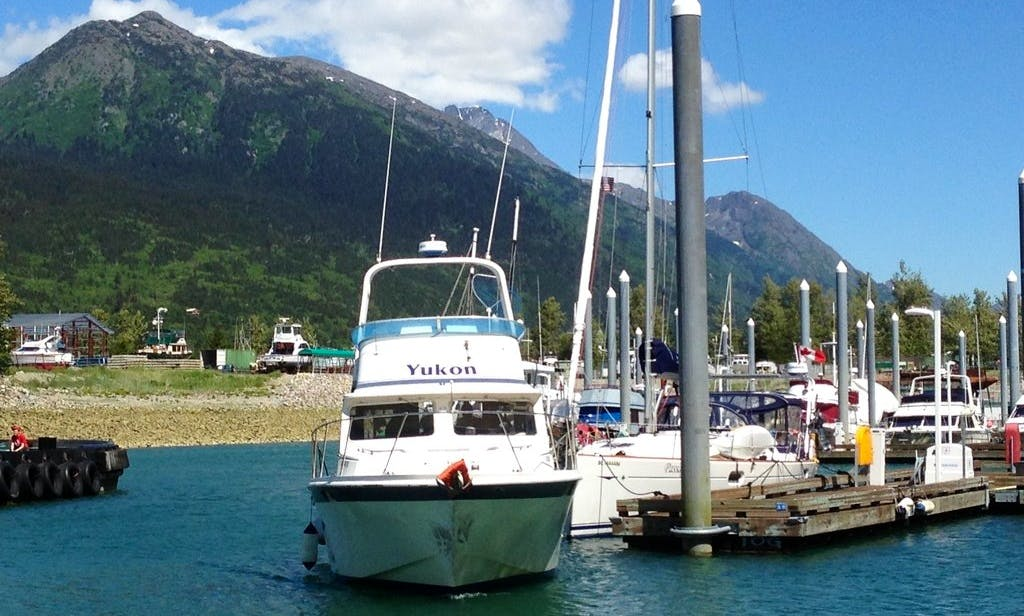 Fun-filled Charter Salmon Fishing Trip for upto 6 Persons in Skagway, Alaska