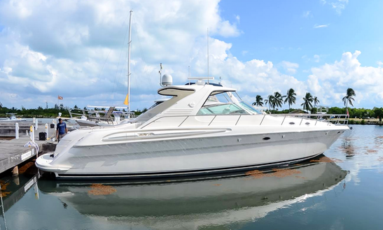 Rent A 60' Sun Sport Motor Yacht In George Town