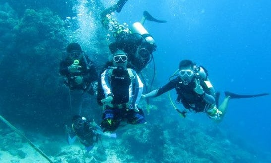 Scuba Diving In Panglao Island