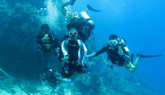 Scuba Diving In Panglao Island