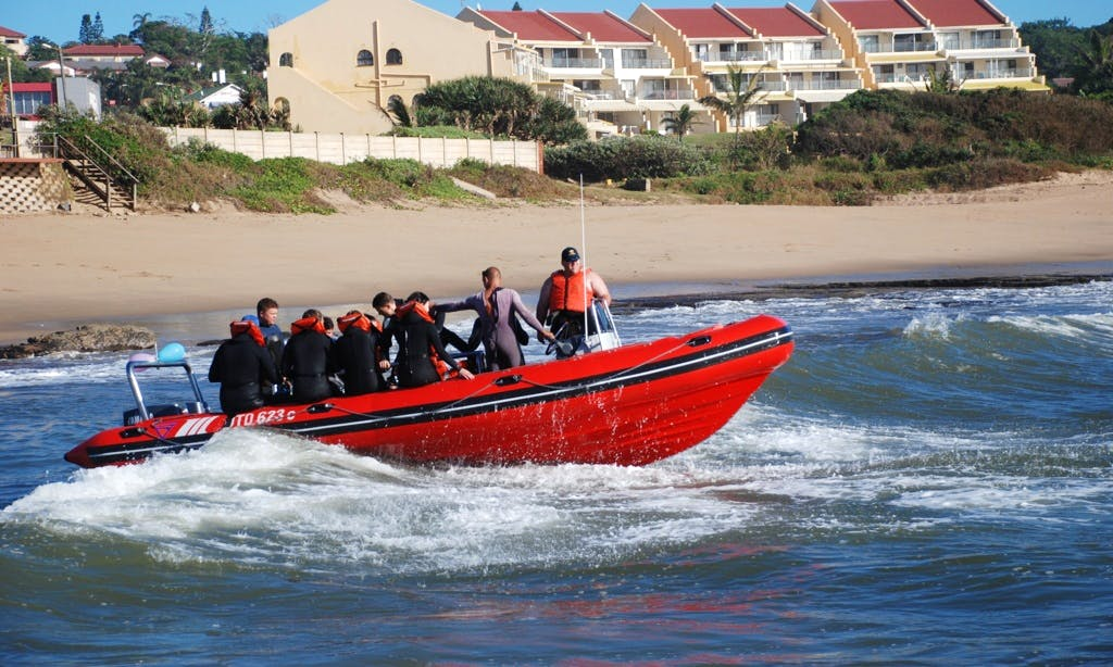 Book a 'Protea Banks' Boat Diving & PADI Courses in Margate, South Africa