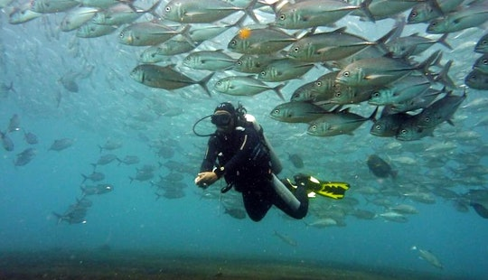 Discover Scuba Diving On The Liberty Shipwreck + Free Underwater Photos