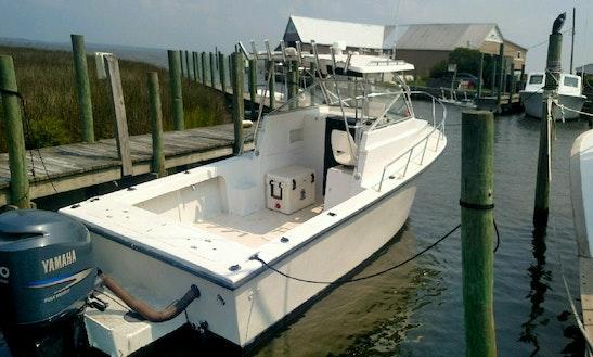 Enjoy Fishing On 28' C Hawk Fishing Boat In Nags Head, North Carolina