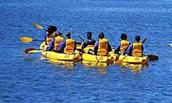 Admire And Explore The Santa Barbara Harbor Through Kayaking!