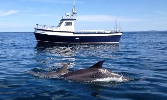 Head Boat Fishing Trips In Sligo, Ireland