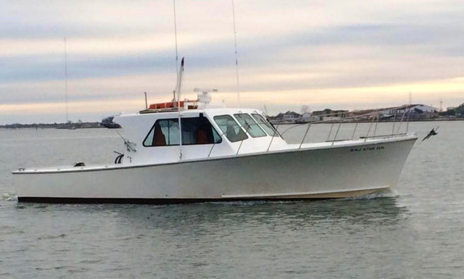 30ft Sport Fisherman Boat Charter in Lower Township, New Jersey