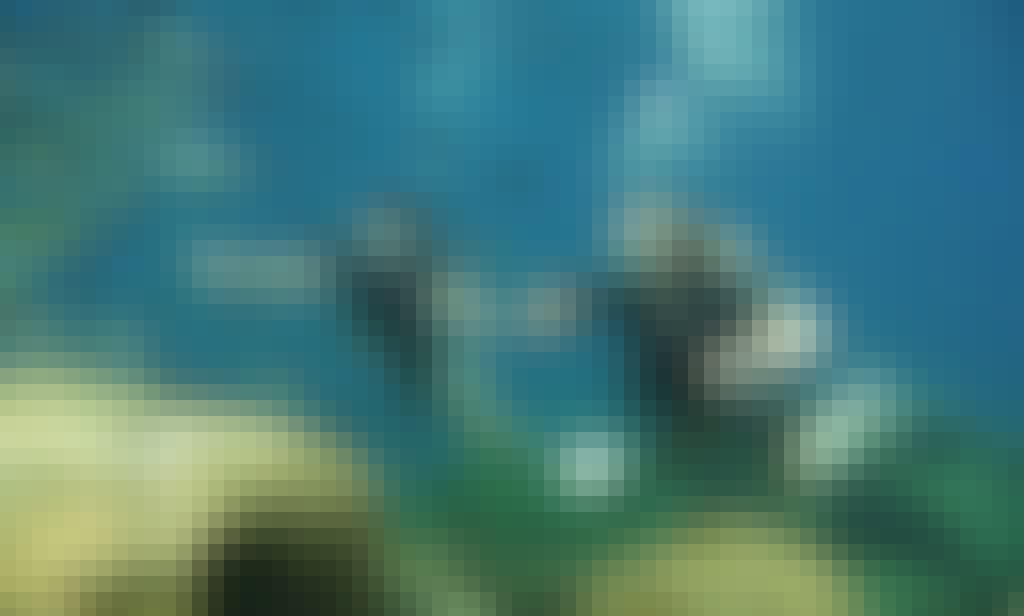 Diving in Kaštel Makariou