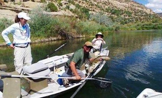 Fishing Trips In Navajo Dam, New Mexico