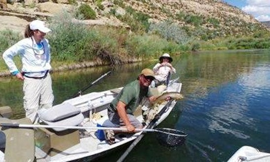 Fishing Trips In Navajo Dam, New Mexico
