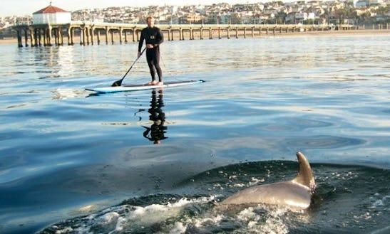 Paddleboard Rental & Lessons In Manhattan Beach, California