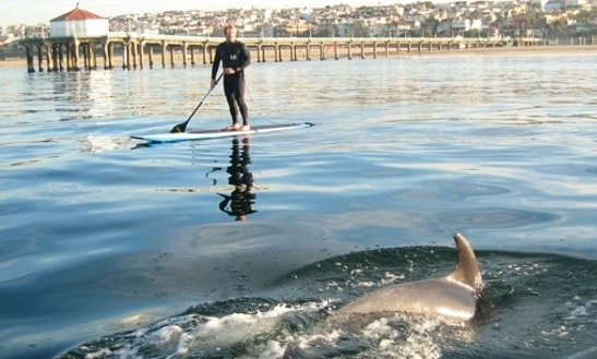 Paddleboard Rental & Lessons In Manhattan Beach, California
