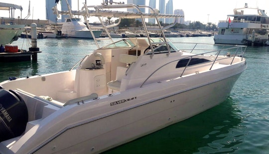 Abu Dhabi Fishing Charter On 33ft