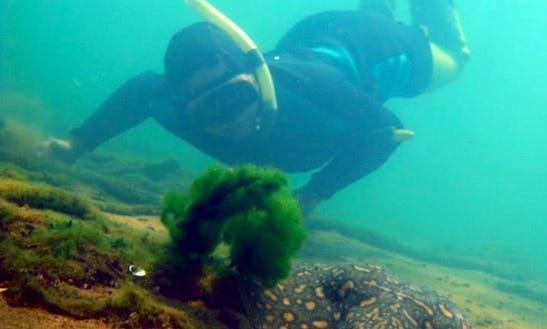 Snorkeling In Ilha Solteira