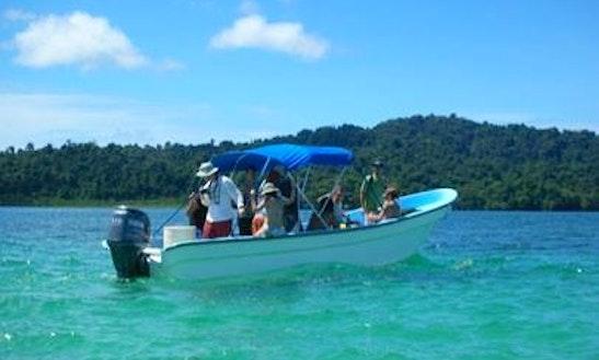Snorkeling Trips In Bella Vista, Panama
