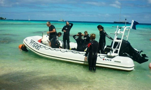 Fun Diving - Magical Encounter In Rangiroa