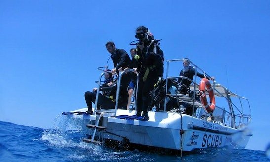 29' Diving Trips In Naxos, Greece