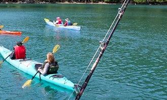 Kayak Rental & Trips in Whittier, Alaska