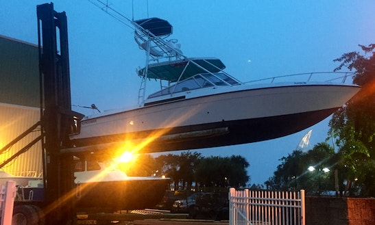 35' Sport Fisherman Charter In Cape Canaveral, Florida