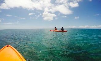 Paddle a Kayak around the Rendesvouz Bay in Little Bay, Saint Peter Parish