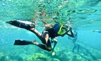 Snorkeling Adventures in Weekes
